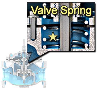 Valve Spring
